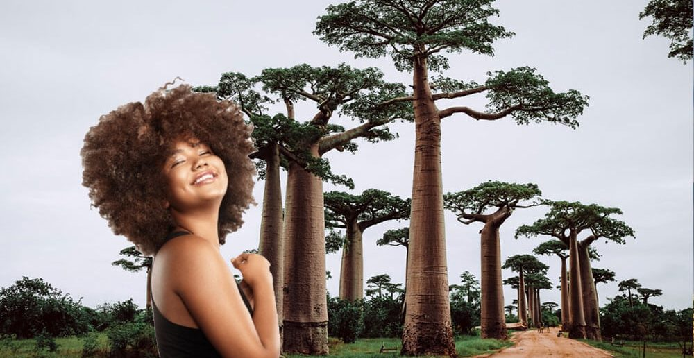 Madagaskar Frauen treffen